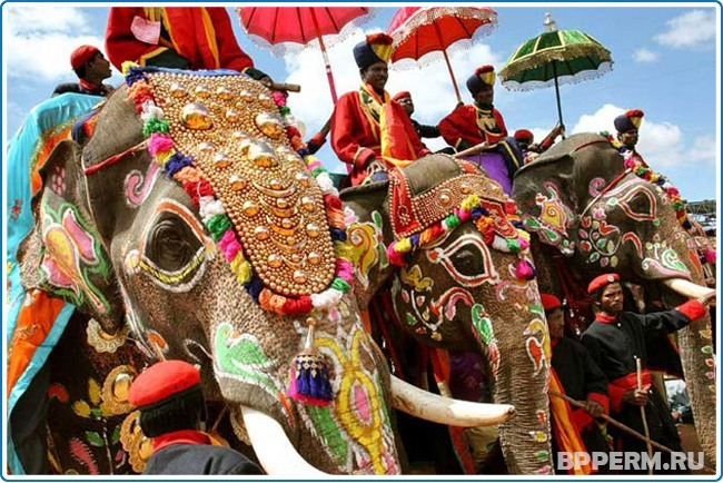 Праздничные слоны в Индии