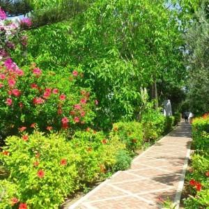Отзыв о поездке в Тунис (Дарья)