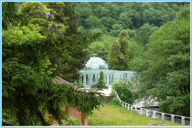 Национальныйо парк «Боржоми» (Грузия)