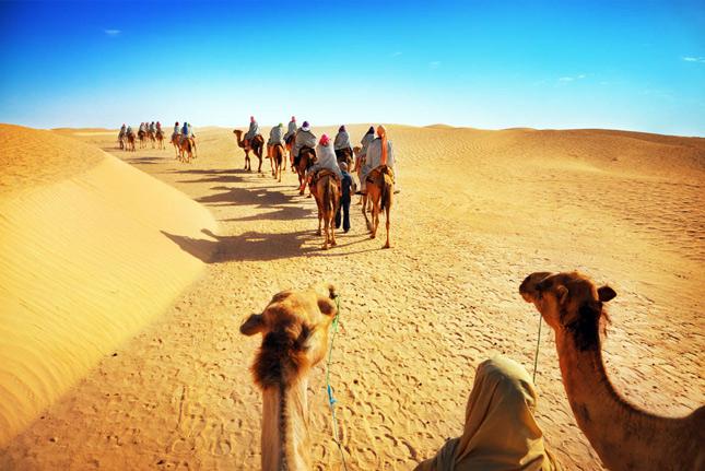 Тунис - прогулка на верблюдах