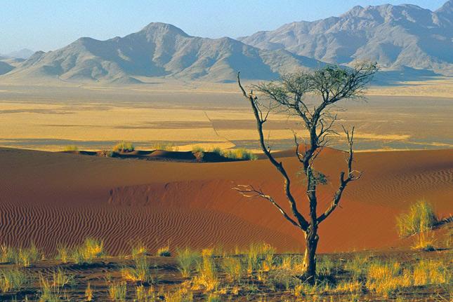 Природа Замбии