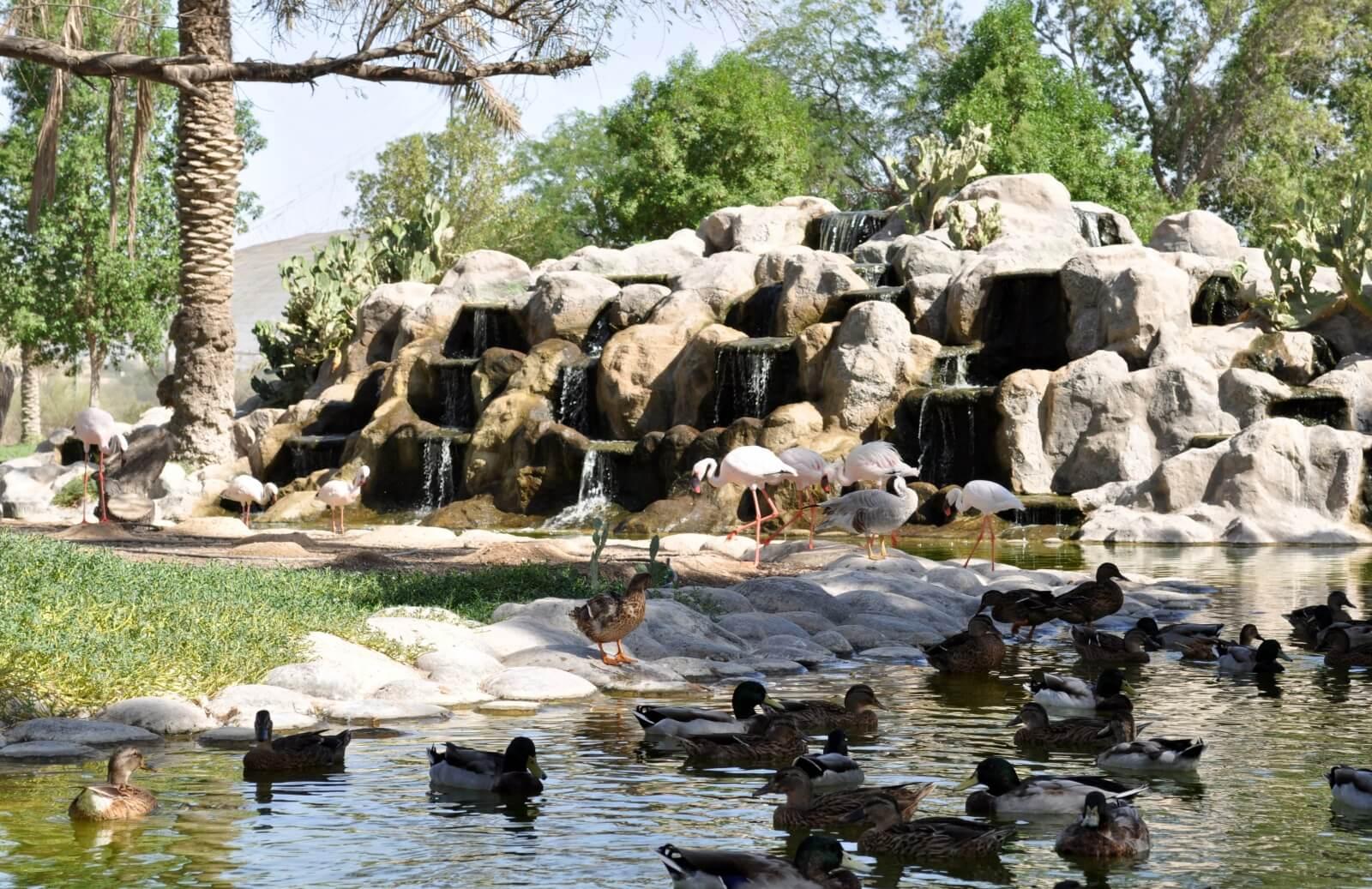Парк Аль-Арин - Бахрейн