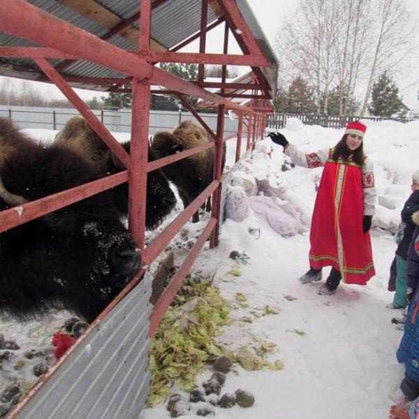 Новогодние гулянья в «Красавинском хуторке»